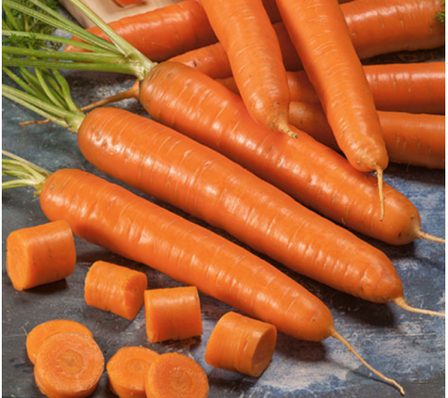 Kashmiri Carrot Red Seeds (No Brand)