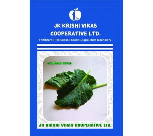 Kashmiri GM Dari Saag Seeds