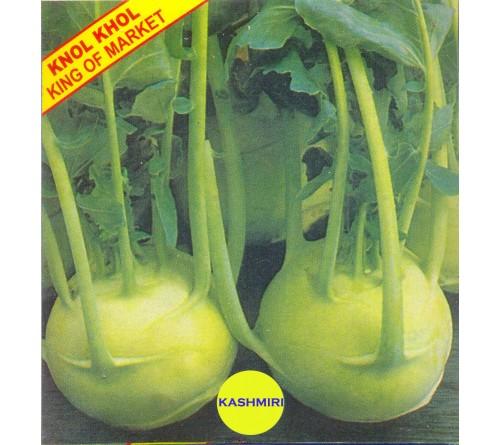 Kashmiri Knol Khol White Seeds