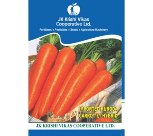 Kashmiri Carrot Red Seeds